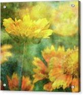 Candy Corn 2770 Idp_2 Acrylic Print