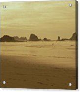 Cannon Beach 3 Acrylic Print
