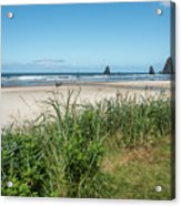 Cannon Beach And Purple Bloom Acrylic Print