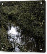 Cannon Beach Creek Acrylic Print
