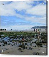 Cannon Beach Tide Pools Acrylic Print