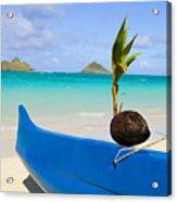 Canoe And Coconut Acrylic Print