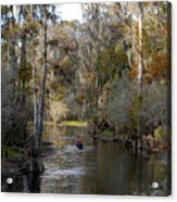 Canoeing In Florida Acrylic Print