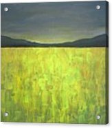 Canola Fields N05 Acrylic Print