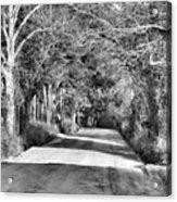 Canopy Clay Road Acrylic Print