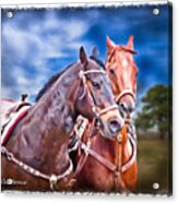 Can't Wait To Get That Tack Off Acrylic Print