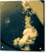 Canvas Seagulls Acrylic Print