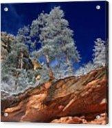 Canyon Acrylic Print