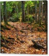 Canyon Falls Trail 1 Acrylic Print