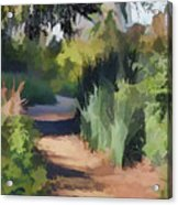 Canyon Path II Painterly Acrylic Print
