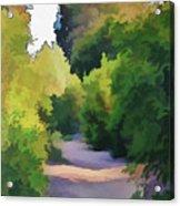 Canyon Path IIi Painterly Acrylic Print