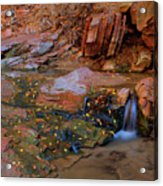 Canyon Reflections 2 Acrylic Print