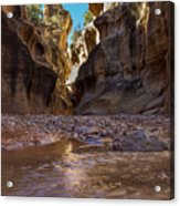 Canyon Stream Acrylic Print