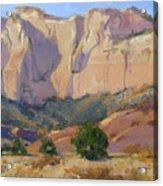 Canyon Walls Of Zion National Park Acrylic Print