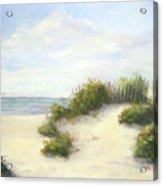 Cape Afternoon Acrylic Print by Vikki Bouffard