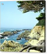 Cape Arago, Or. Acrylic Print