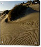 Cape Blanco Sands Acrylic Print
