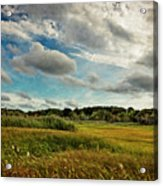 Cape Cod Marsh 2 Acrylic Print