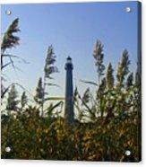 Cape May Light Autumn Acrylic Print