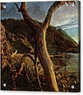 Cape Perpetua Sunset Acrylic Print