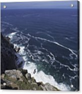 Cape Point, South Africa Acrylic Print