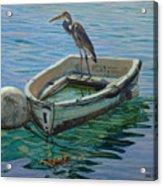Capt. G. B. Heron Acrylic Print