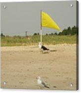 Capture The Flag Acrylic Print