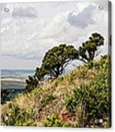Capulin Volcano View Panorama New Mexico Acrylic Print