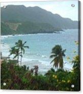 Carambola Photograph Virgin Islands Acrylic Print