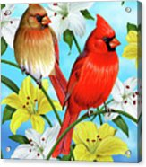 Cardinal Day Acrylic Print