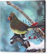 Cardinal Queen Acrylic Print