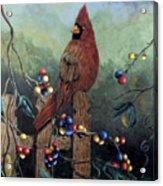 Cardinal Sitting On A Fence Acrylic Print