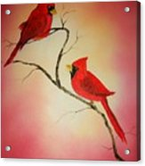 Cardinals At Sunset Acrylic Print