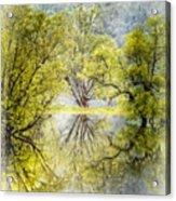Caress In The Mist Acrylic Print