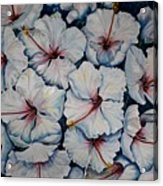 Caribbean Hibiscus Acrylic Print