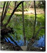 Carmel River At Gilmore Ranch Acrylic Print