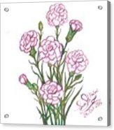 Carnation Pink Acrylic Print