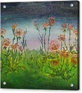 Carnations At Dusk Acrylic Print