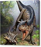 Carnotaurus Attacking An Antarctopelta Acrylic Print