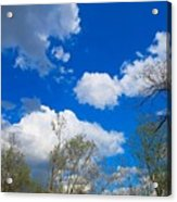 Carolina Blue Sky After The Rain Acrylic Print