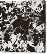 Carolina Panthers 1a Acrylic Print