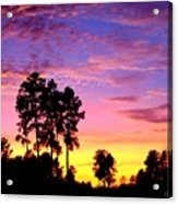 Carolina Pine Sunset Acrylic Print