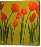 Carolina Tulips Acrylic Print