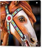 Carousal Horse Acrylic Print