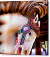 Carousel Horse Portrait Acrylic Print by Garry Gay