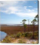 Carrabelle Salt Marshes Acrylic Print