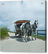 Carriage Ride Acrylic Print