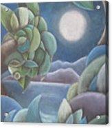 Carribean Night Acrylic Print