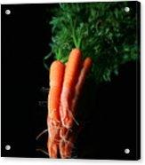Carrots Acrylic Print