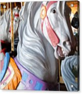 Carrousel 25 Acrylic Print